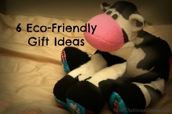 6 Eco-Friendly Gift Ideas