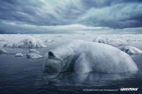 Green Peace Protects Polar Bear