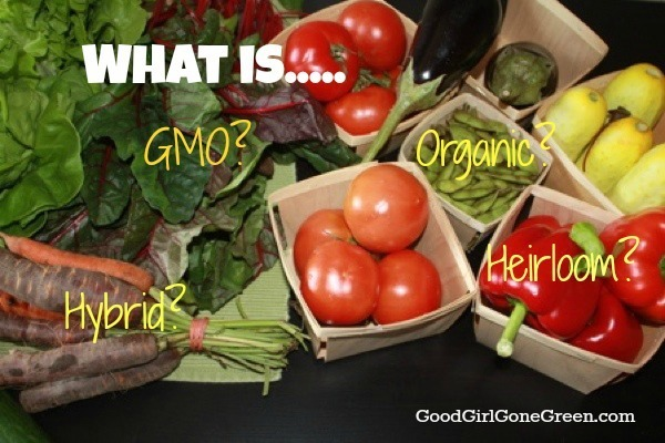 What Is The Difference Between Organic, Heirloom, Hybrid, and GMO