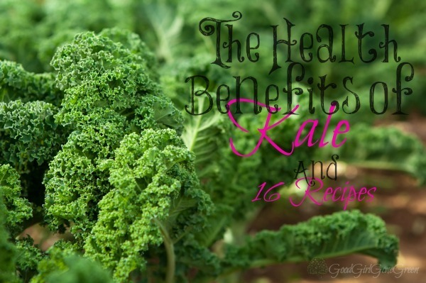The Health Benefits of Kale and 16 Recipes #realfood #leafygreens #kale