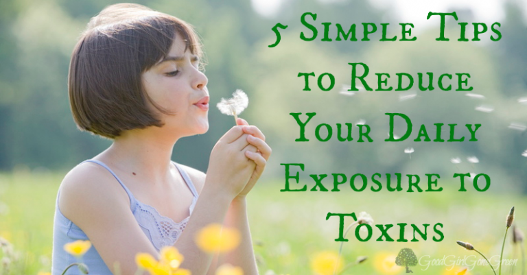 How to Reduce Your Child's Daily Exposure to Toxins GoodGirlGoneGreen.com #safe #nontoxic #toxic #healthy