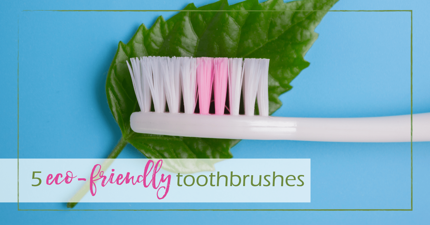 5 eco friendly toothbrushes
