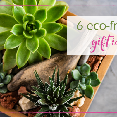 6 Eco-Friendly Gift Ideas for the Holidays