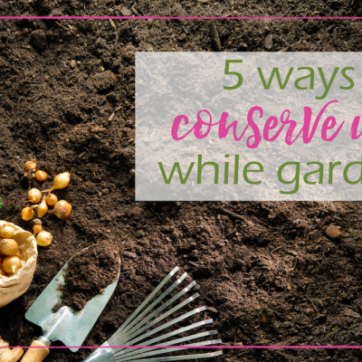 Ways to Conserve Water While Gardening