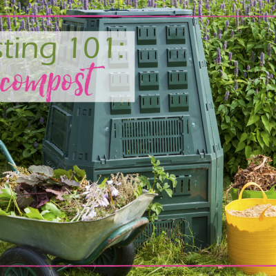 Composting 101- Learn How to Compost