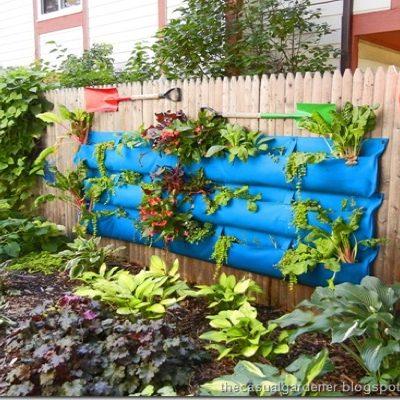 How to Build a Vertical Living Wall Garden