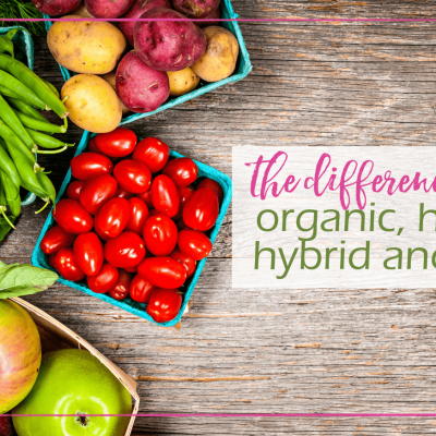 What Is The Difference Between Organic, Heirloom, Hybrid, and GMO?