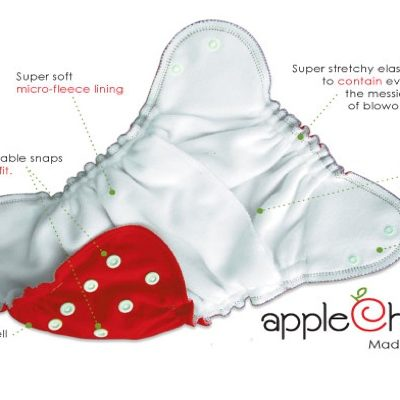 AppleCheeks diapering system review